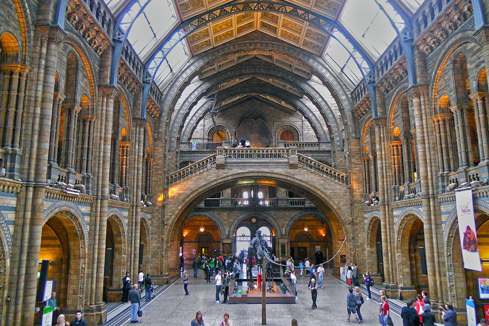 Natural History Museum   London for free: places to visit and things to do