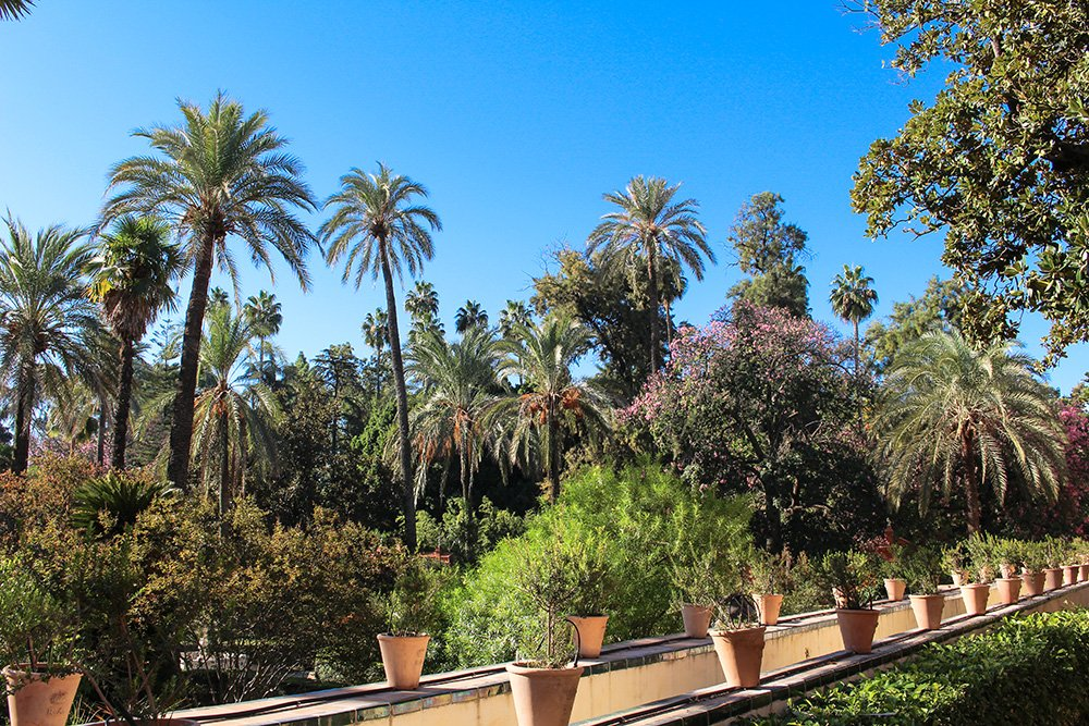 3 Weeks of Solo Travel in Spain, Part 6: 3 days in Seville | Gardens of Real Alcazar of Seville