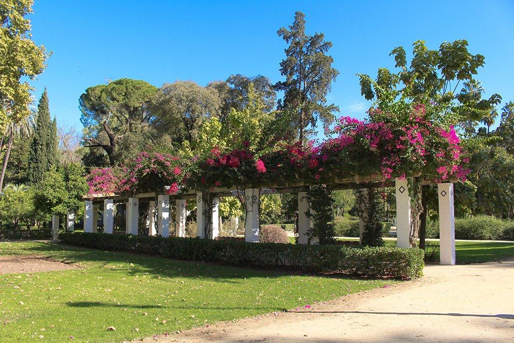 3 weeks in Spain itinerary   Maria Luisa Park
