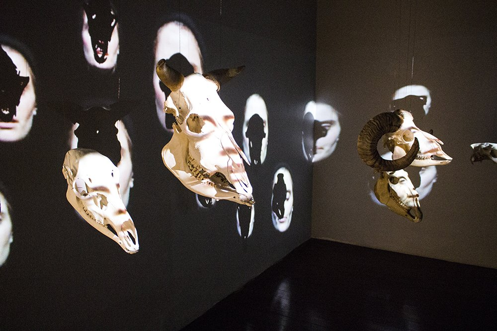 What to do in Stavanger in one day | Cranium Choir in Stavanger City Museum