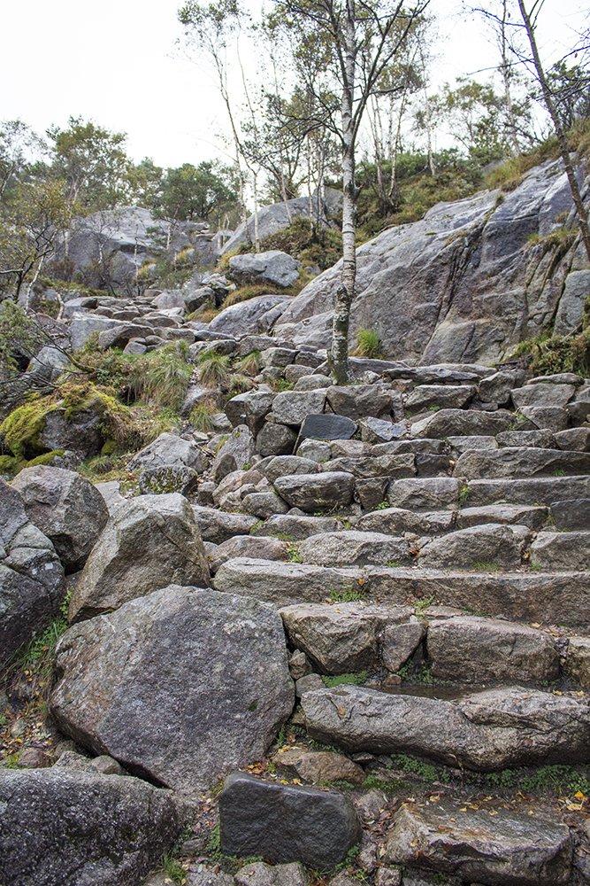 Preikestolen hike   Stone stairways to Preikestolen