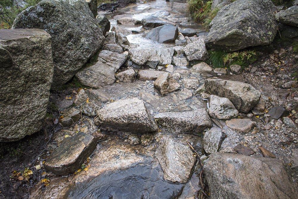 Preikestolen hike   Preikestolen trail