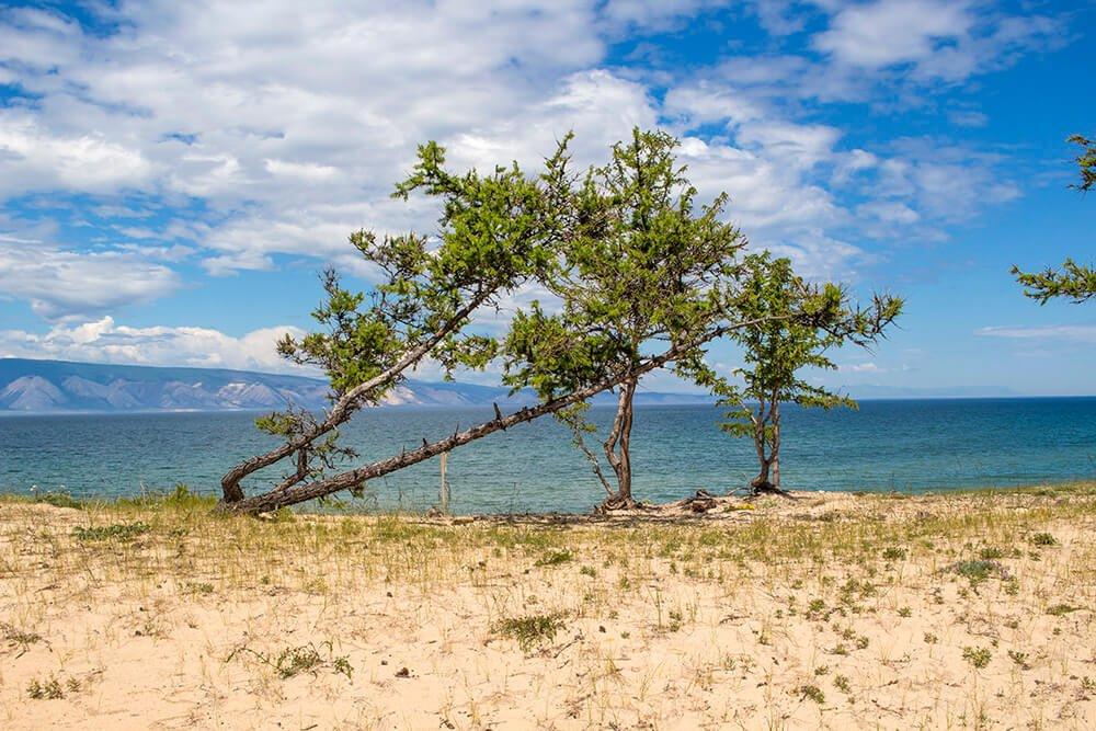 Saraisky Beach in Olkhon