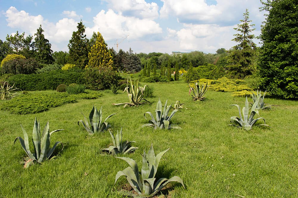 Dendrarium Park in Chisinau, Moldova